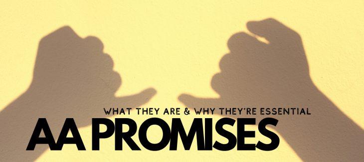 aa principles 1 aa promises